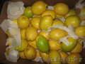фрукты оптом