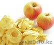 Линии для сушки овощей,  фруктов,  ягод,  грибов,  лука,  HANS BINDER комплектные «по