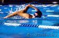 Обучение Плаванию В Астане команда