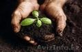 Продам органическое сапропелевое удобрение