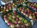яблоки с Польши вкусные
