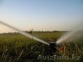 Полив озеленение газон брусчатка освещение - Изображение #3, Объявление #1276086
