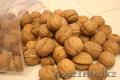 Оптом орех грецкий