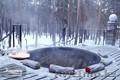 Баня-чан в Боровом