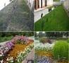Озеленение - Газоны, Цветник, Дорожки, Водоёмы, Системы полива. - Изображение #6, Объявление #1620863