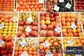East-fruit.com приглашает к сотрудничеству участников плодоовощного рынка